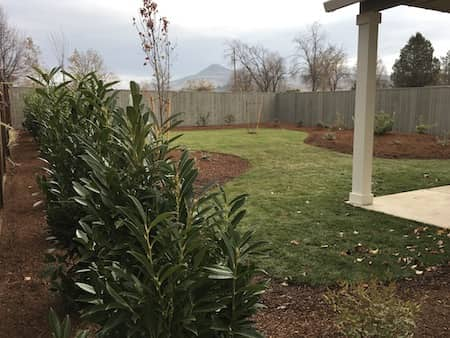 Time Laspe Landscaping Backyard