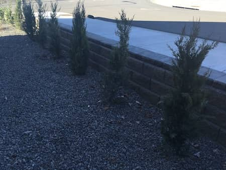 Natural rock retaining wall in front yard