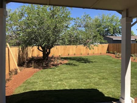 Backyard Landscaping With Sod & Irrigation System