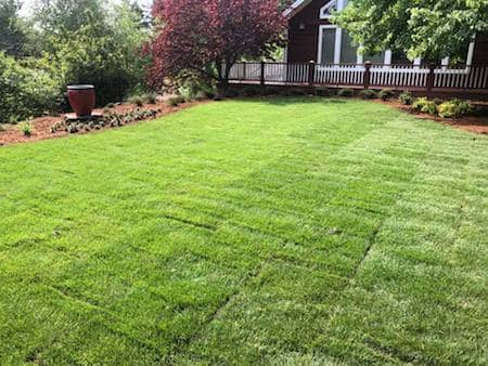 Landscaping Project In Medford With Sod and Paver Patio