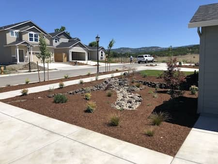 Front yard landscaping with dry creek bed