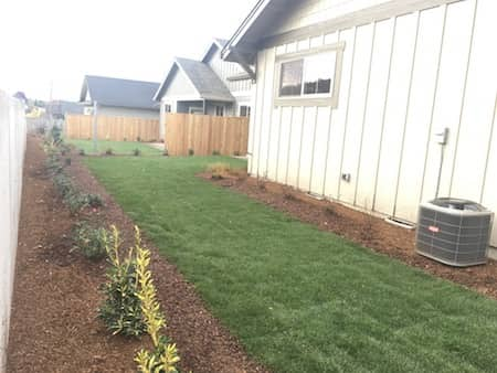 New home landscaping in backyard