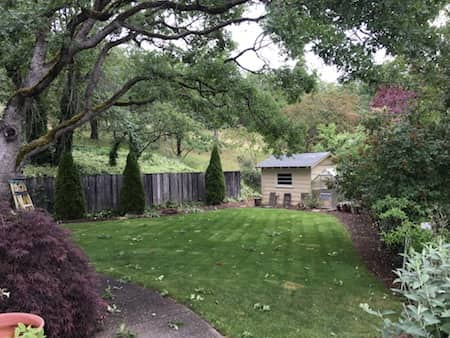 Landscaping With Sod In Medford