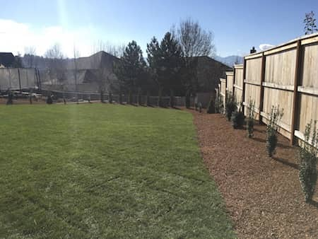 Medford Landscaping Project - before and after