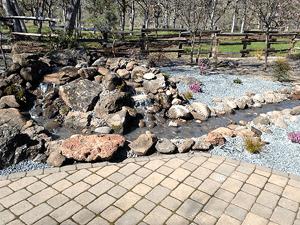 Fountain & Pond