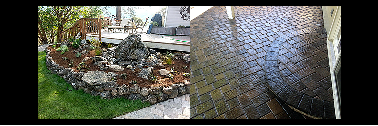 landscape custom back yard