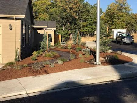 Yard landscaped with natural rock, pavers, and plants