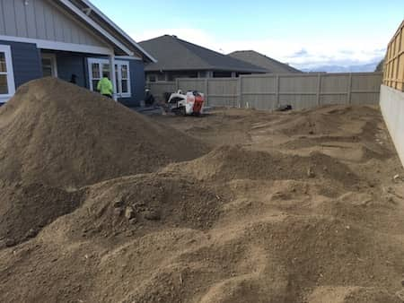 Front yard and back yard landscaped